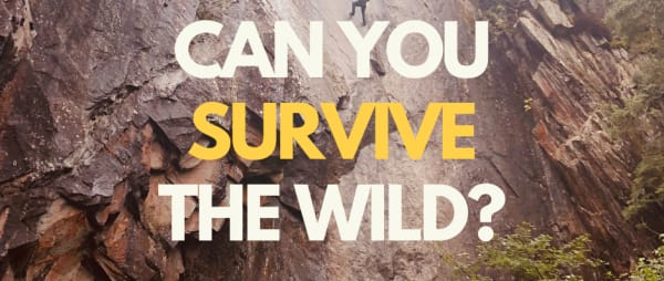 Survive The Wild 2021